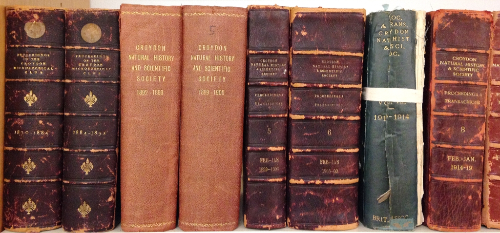 Proceedings of the Society, back to 1870, available at the Local Studies Library, Museum of Croydon