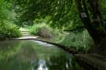 Stepping Stone bridge across the River Mole at Box Hill [Creative Commons: Johan J.Ingles-Le Nobel]